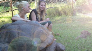 Two female students working with tortoises