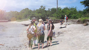 A group of students on a field trip on a beach