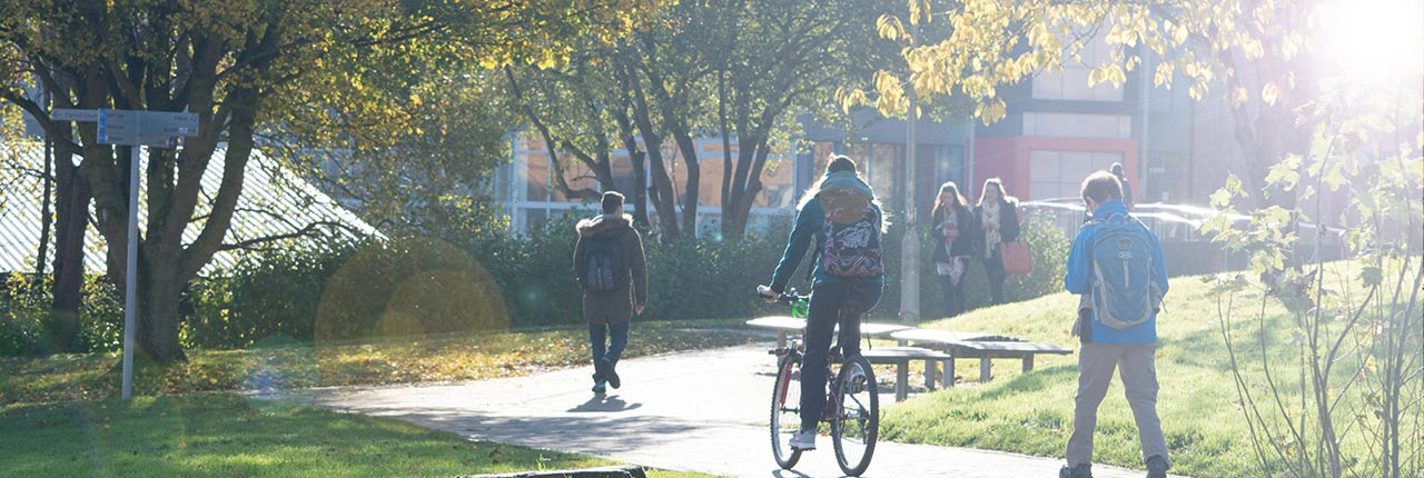 Cyclists on the leafy campus