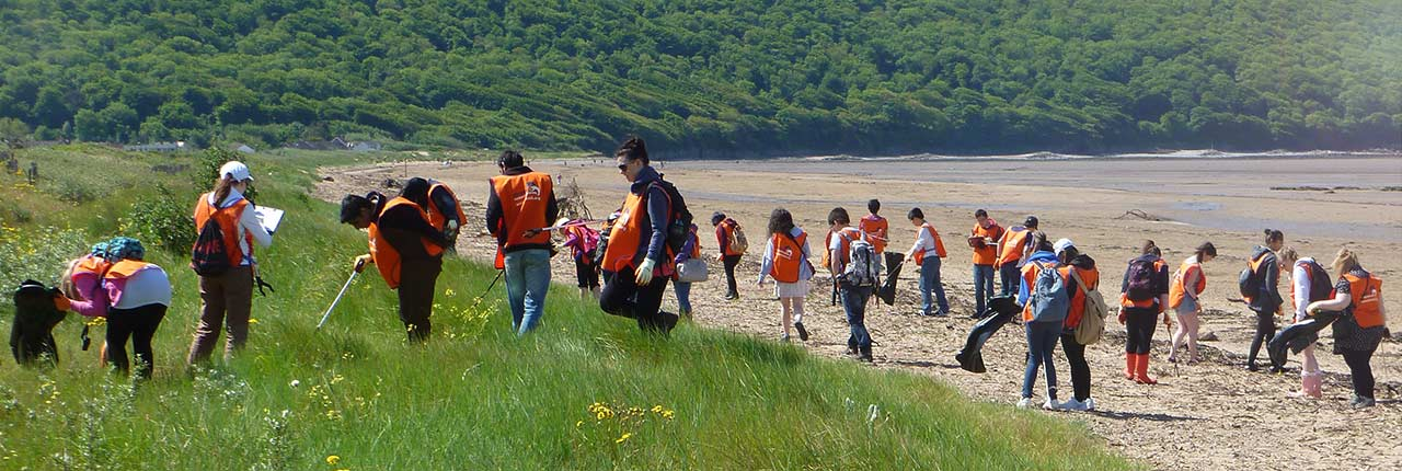 Student volunteers cleaning a beach