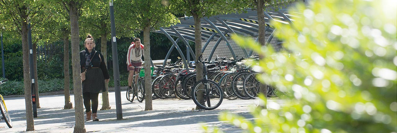 Campus bike storage