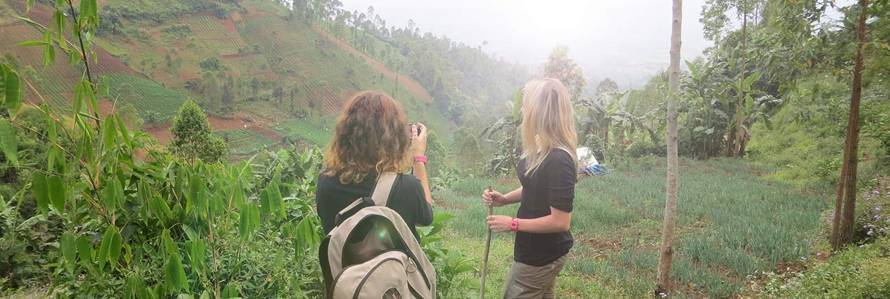 Students photographing the jungle