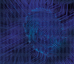 A fingerprint as part of a network diagram