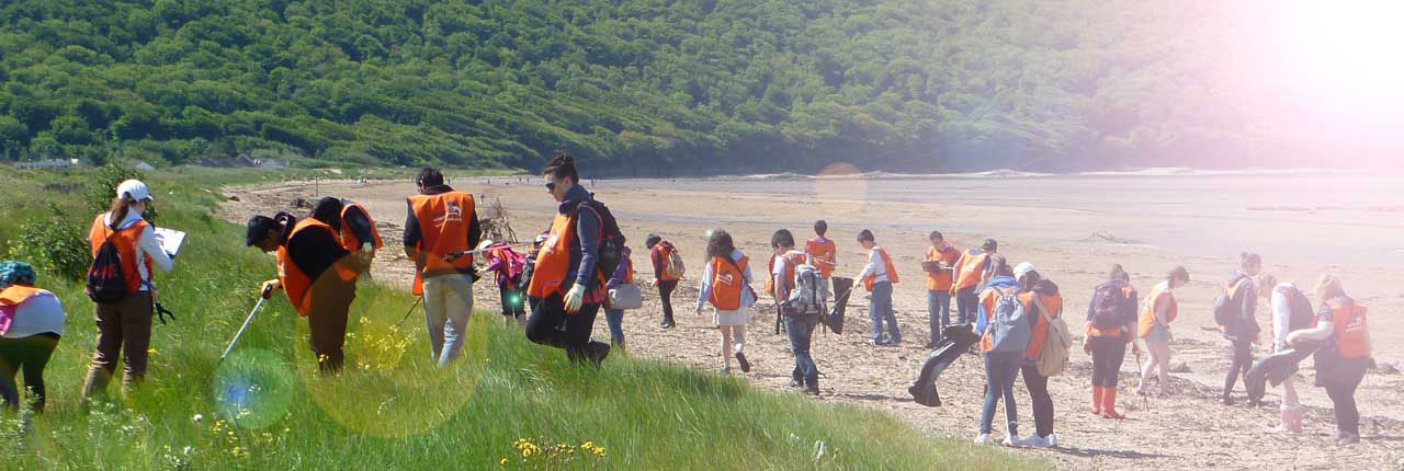 Volunteers working at a beach clean